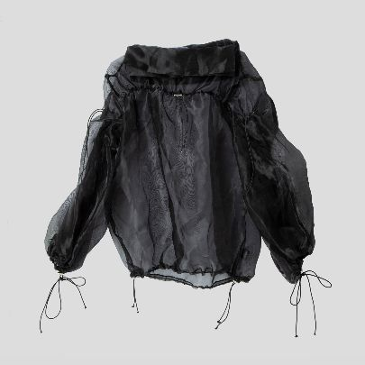 Picture of Organza blouse