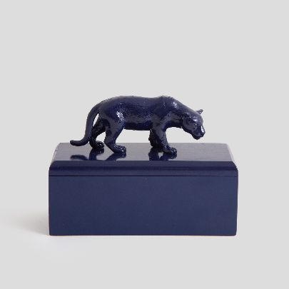 Picture of Blue leopard box