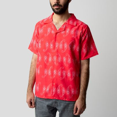 Picture of Paisley shirt