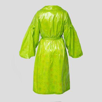 تصویر بارانی ماه شکارچی سبز فسفری