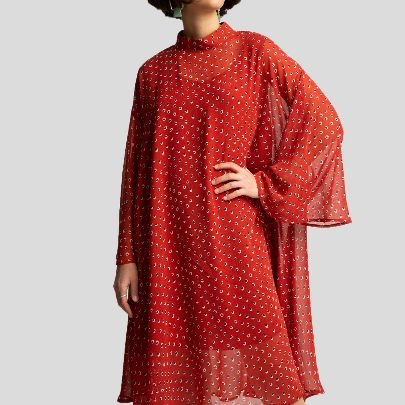Picture of dotted red dress