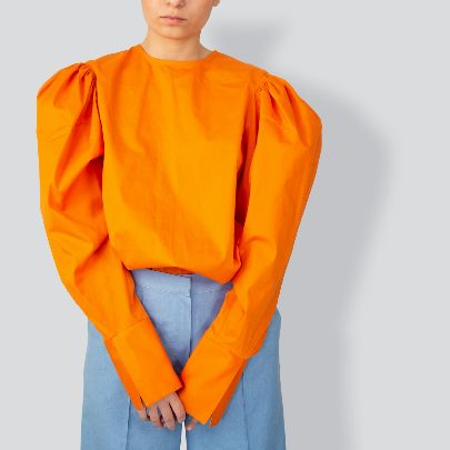 Picture of orange blouse