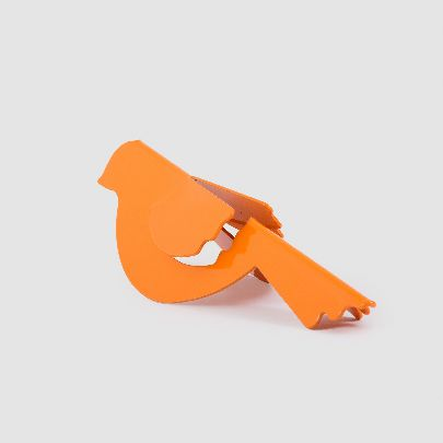 Picture of orange bird