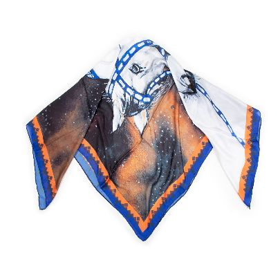 Picture of diamond of the night scarf