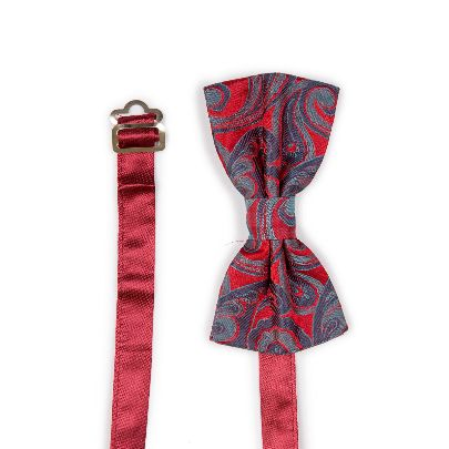 Picture of patterened paisley bowtie
