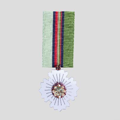Picture of greentehran brooch