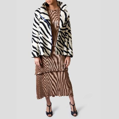 Picture of zebra coat