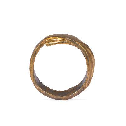 Picture of banafsheh saberi golden bangle
