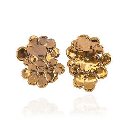 Picture of banafshe saberi golden earrings