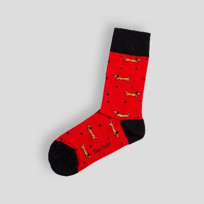 Picture of dog socks
