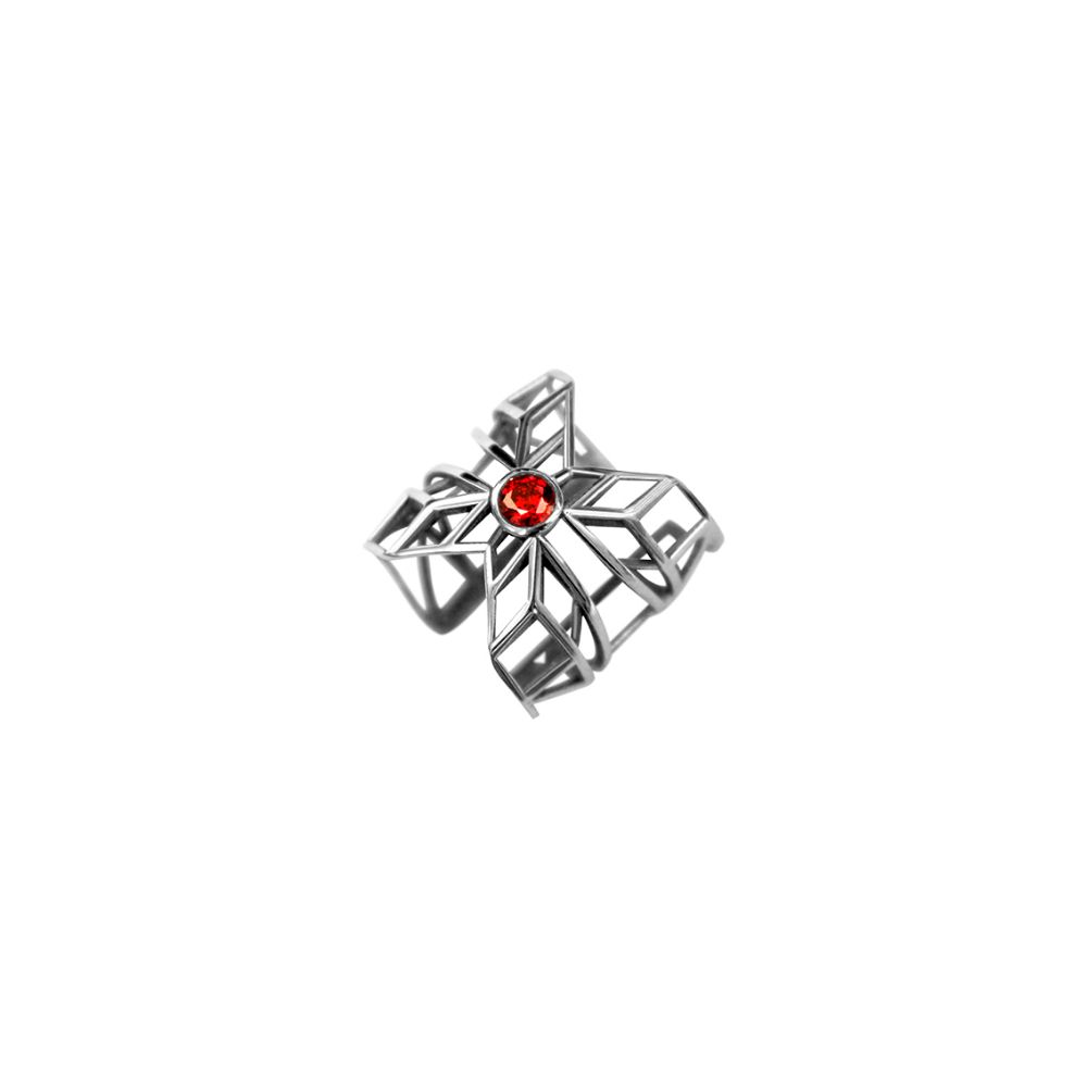 Picture of ring, delroba collection
