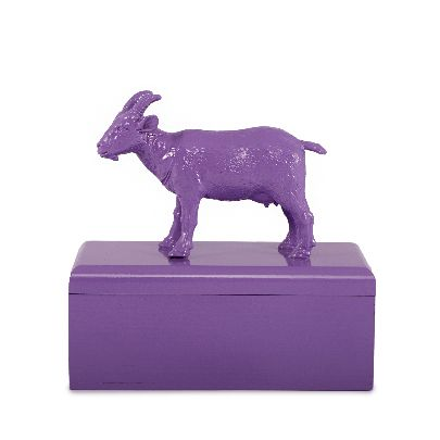 Picture of pruple goat box
