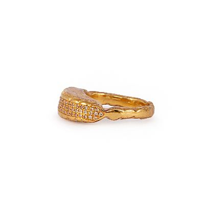 Picture of gold ring with silver crystals