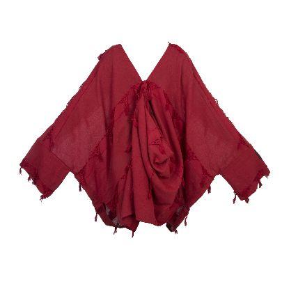 Picture of solmaz mahjoubifard red kimono
